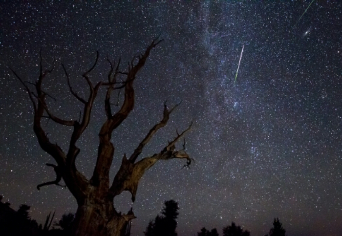 Meteor Shower Night Sky